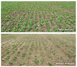 AIRGUARD™ Stainless Steel Seed Brake photos of fields with and without seed brake being used